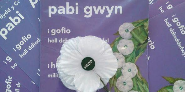Welsh-language white poppies and leaflets