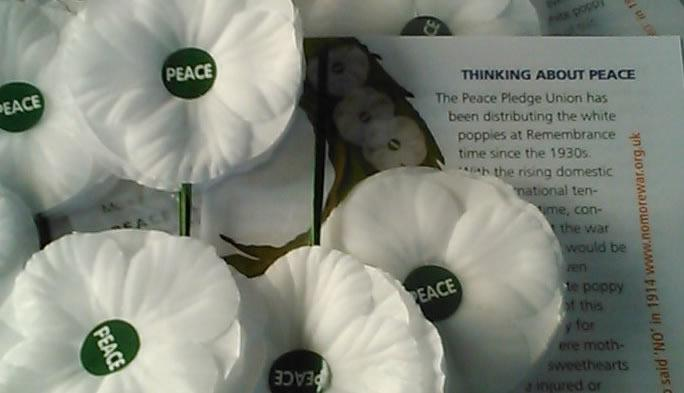 White poppies and leaflets