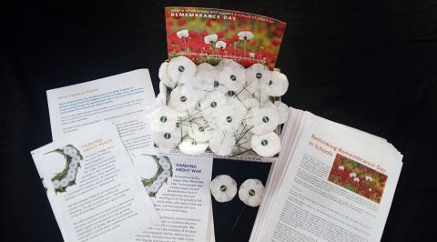 White poppies in schools pack